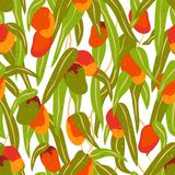 Seamless pattern of mango fruits and leaves stock illustration