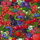 Seamless pattern with many berries like blueberry, raspberry, gooseberry, plum Stock Photos