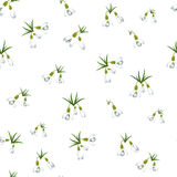 Seamless pattern with many snowdrops flowers with green leaves same sizes. White background. Vector illustration Royalty Free Stock Photo