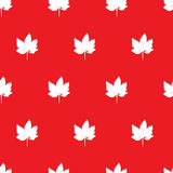 Seamless pattern with maple leaf. Stock Photo