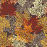 Seamless pattern with maple leaves Royalty Free Stock Photography