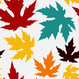 Seamless pattern with maple leaves Stock Photos