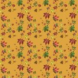 Seamless Pattern with Maple Leaves in red, ocher and yellow colo. Rs.Very good for wrapping paper and cover Stock Images