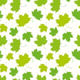 Seamless pattern of maple leaves Royalty Free Stock Images