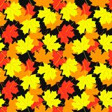Seamless pattern of maple leaves. Vector Stock Photo