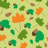 Seamless pattern of maple and oak leaves. And acorns Stock Photos