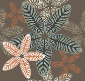 Seamless Pattern of Maranta Leaves. Royalty Free Stock Photography