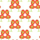 Seamless pattern with marigold flower Stock Image