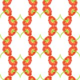 Seamless pattern with marigold flower Royalty Free Stock Images