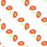 Seamless pattern with marigold flower Royalty Free Stock Photos