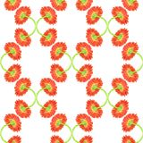 Seamless pattern with marigold flower Stock Photo