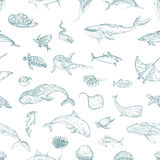 The seamless pattern of marine animals. Stock Photography