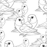 Seamless pattern Masked Lovebird coloring Parrot Vector illustra Royalty Free Stock Images