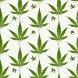Seamless pattern medical marijuana green leafs over polka dots on white background. Cannabis vector illustration. Stock Photo