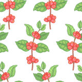 Seamless pattern with medical plants. Royalty Free Stock Photo