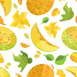 Seamless pattern melon and flowers in origami style. On white field Stock Photography