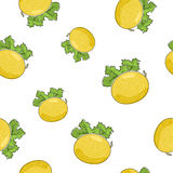 Seamless Pattern of Melon Royalty Free Stock Image