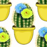 Seamless pattern  Mexican cactus flowering  in a pot. vector ill. Seamless pattern  Mexican cactus flowering in a pot  vector illustration Royalty Free Stock Photography