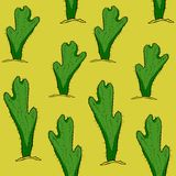 Seamless pattern  Mexican cactus with thorns. vector illustratio. Seamless pattern Mexican cactus with thorns  vector illustration Stock Images