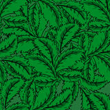 Seamless pattern of mint leaves Royalty Free Stock Photo
