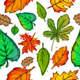 Seamless Pattern of Mix Shapes Leaves Watercolor. Art Royalty Free Stock Photos