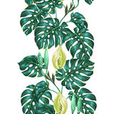Seamless pattern with monstera leaves. Decorative image of tropical foliage and flower. Background made without clipping Royalty Free Stock Image