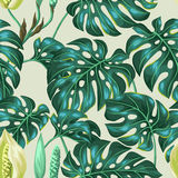 Seamless pattern with monstera leaves. Decorative image of tropical foliage and flower. Background made without clipping Royalty Free Stock Photography