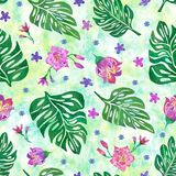 Seamless pattern with monstera leaves and tropical flowers. On green background stock illustration