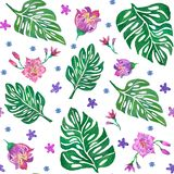 Seamless pattern with monstera leaves and tropical flowers. On white background royalty free illustration
