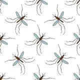 Seamless pattern with mosquito.Culex pipiens. hand-drawn mosquito. Vector Stock Photos