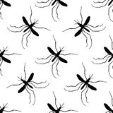 Seamless pattern with mosquito.Culex pipiens. hand-drawn mosquito. Vector Royalty Free Stock Images