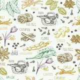 Seamless pattern with multi-colored spices Royalty Free Stock Photo