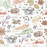 Seamless pattern with multi-colored spices on white background Stock Photography
