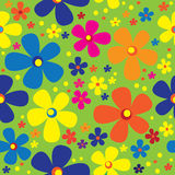 Seamless pattern multicolor chamomile Stock Photos