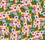 Seamless pattern with multicolor flowers Stock Images