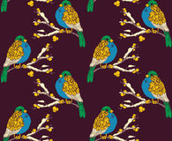 Seamless pattern with multicolored birds. On snowy branches Stock Photography