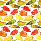 Seamless pattern of multicolored peppers Stock Images