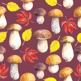 Seamless pattern with mushrooms and leaves on maroon background. Hand painted in watercolor royalty free illustration