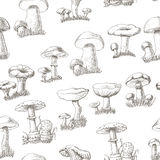 Seamless pattern with mushrooms on a white background Royalty Free Stock Photo