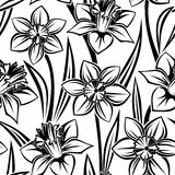 vector seamless pattern with narcissus. Royalty Free Stock Photo
