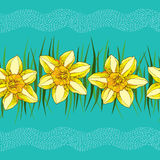 Seamless pattern with narcissus flower or daffodil in yellow and green leaves  Royalty Free Stock Images