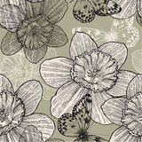 Seamless pattern with narcissus flowers and butter. Flies, hand drawing. Vector illustration Stock Image