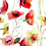 Seamless pattern with Narcissus and Poppy flowers Stock Photos