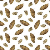 Seamless pattern with nature objects. Seamless pattern with watercolor pine cones, hand drawn forest background Stock Photos