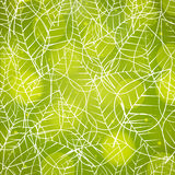 Seamless pattern for Nature. Stock Image
