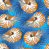 Seamless pattern with Nautilus Pompilius or chambered nautilus on the blue background with stripes. Royalty Free Stock Photos