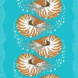 Seamless pattern with Nautilus Pompilius or chambered nautilus on the turquoise background with bubbles and stripes. Stock Image