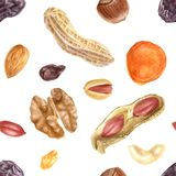 Seamless pattern with nuts and dried fruits. Seamless pattern with watercolor nuts and dried fruits on white background Stock Images