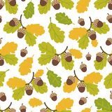 Seamless pattern of oak branches and acorns on a white background. Autumn pattern. Vector illustration vector illustration
