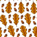 Seamless pattern from oak leaves and acorn on a white background. Hand drawing. Vector illustration. Autumn wallpaper royalty free illustration